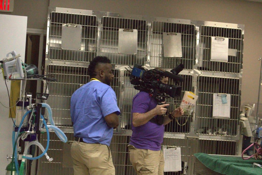 Critter fixer crew films