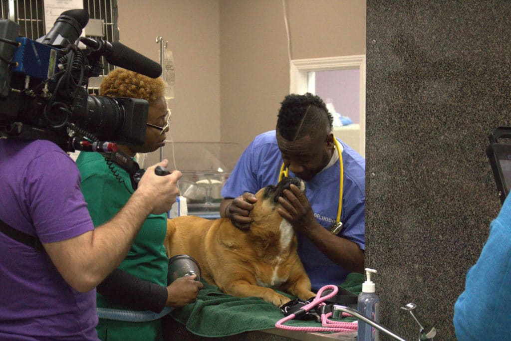 Critter fixer crew films dr. Hodges with a dog